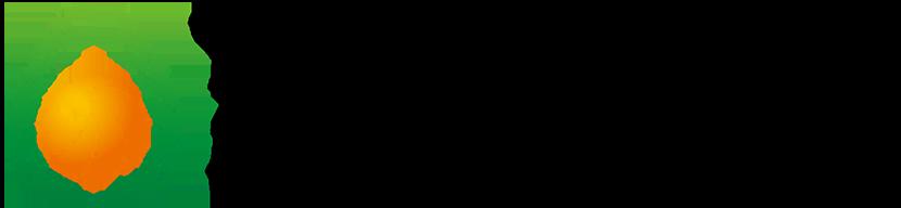 アクチュアリー・リクルートの国際的ネットワーク | 東京国際アクチュアリー&エグゼキュティブサーチ